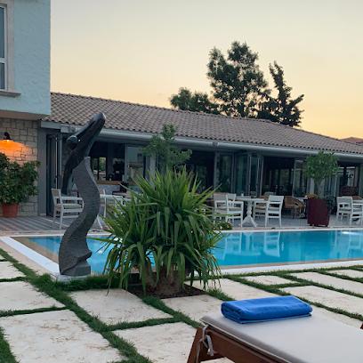 Casa Luna Hotel
