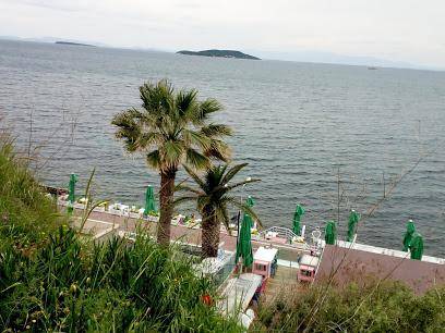 Palm Motel Beach Club